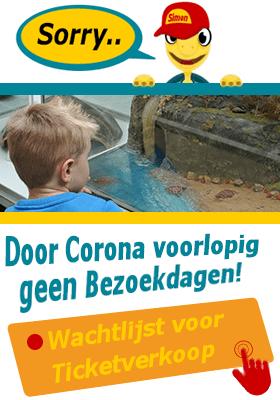 Door Corona voorlopig geen Bezoekdagen Schildpaddencentrum